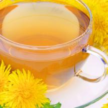 たんぽぽ茶・不妊・授乳・効果