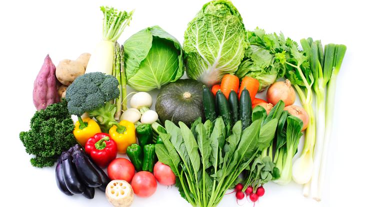 野菜を摂ることが大切